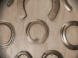 Selection of horseshoes
